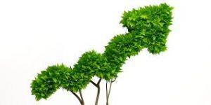 Un plan de relance écologique ?