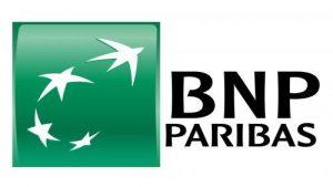 logo BNP SRD