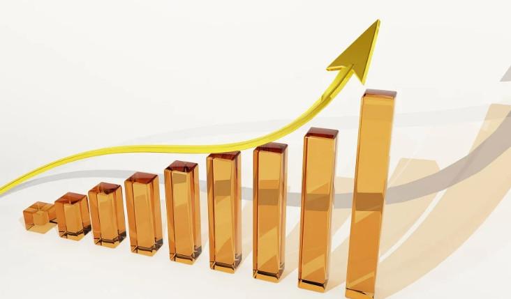 Combien investir dans un portefeuille boursier