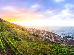 Agriculture au Portugal