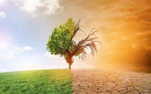 Les institutionnels de plus en plus impliqués dans la réduction du changement climatique ?