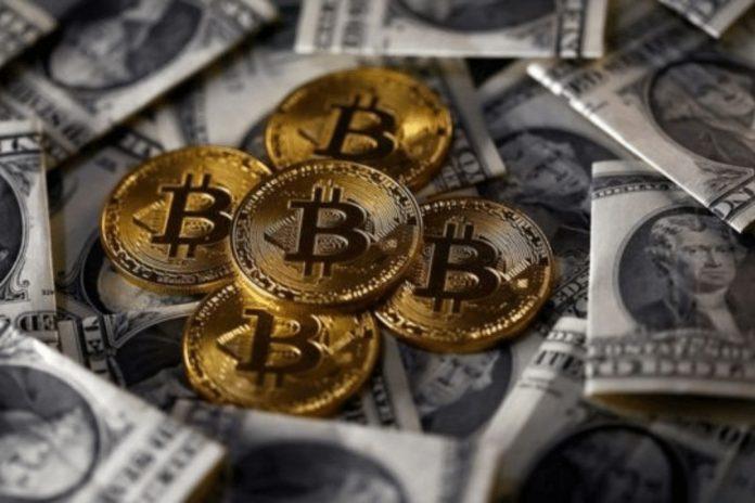 Bitcoin perd 50%